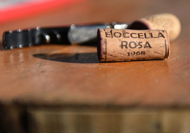 Boccella Rosa