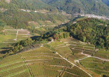 Valle di Cembra: un pentagramma con note uniche