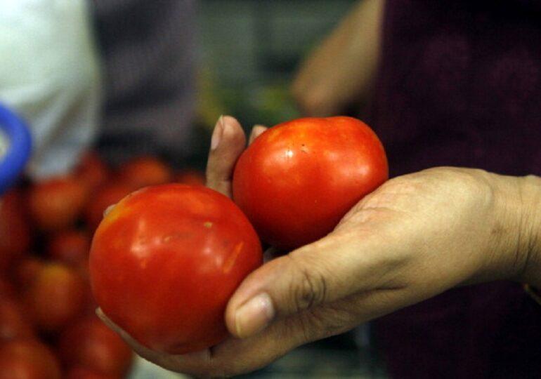 Contro la contraffazione dei prodotti gastronomici italiani  arriva l'iniziativa dello Chef Zonfa