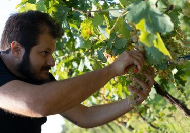 CLUBHOUSE CONQUISTA IL MONDO DEL WINE